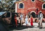 Provence Wine Tour - Private Day Tour from Cannes, Frejus Saint-Raphael, França