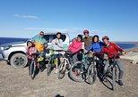 Bicicleta con Lobos Marinos. Area Natural Protegida Punta Loma. Puerto Madryn, ARGENTINA
