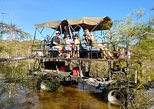 Family Fun Everglades Swamp Buggy Tour., Fort Myers, FL, ESTADOS UNIDOS