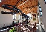 Circuito Paleontologico: Villa el Chocon, Cafayate, ARGENTINA