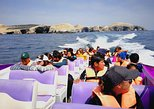 Paracas Fullday - Islas Ballestas y Nationalpark in Minibuggy. Paracas, PERU