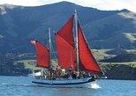 Sailing and Wildlife Tour Akaroa Fox II Sailing, Akaroa, NUEVA ZELANDIA
