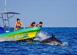 Puerto Escondido Dolphin Watching Cruise with Snorkeling. Puerto Escondido, Mexico