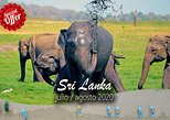 Travel with Spanish group in July and August, Negombo, SRI LANKA