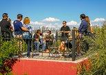 Vinos y olivos en Maipú! Conociendo una de las areas vitivinícolas mas antiguas, Mendoza, ARGENTINA