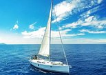 3 Hour All Inclusive Whale & Dolphin Watching Yacht Trip. Tenerife, Spain