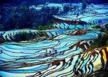 4 Days Yunnan Yuanyang Rice Terraces Photography Tour from Kunming. Kunming, CHINA