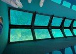 Paseo en barco con fondo de cristal con en Cayo Hueso y arrecife de coral, los arrecifes de coral con opción al atardecer. Cayo Hueso, FL, ESTADOS UNIDOS