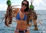 Punta Cana Intrepid Lobster Fishing and Eating Catamaran Excursion,
