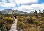 Cradle Mountain Day Tour. Launceston, AUSTRALIA