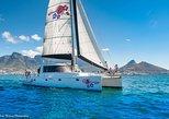 Sailing in The Bay (One Hour), Cidade do Cabo, África do Sul