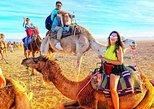 Desert Agafay and Atlas Mountains & Villages & Camel Ride Marrakech Day Trip, Marrakech, cidade de Marrocos, MARROCOS