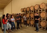 VIP-Meet the Winemakers in Valle de Guadalupe, wine and lunch included. Ensenada, Mexico