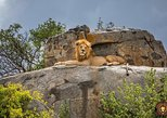 5 Days Safari Tour Tanzania. Arusha, Tanzania