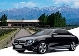 Private Airport Transfer: El Plumerillo International Airport (MDZ) to Mendoza, Mendoza, ARGENTINA