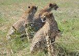 Chobe Day Trip -Botswana,