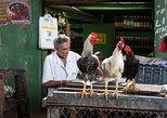 Ivan Bahia, Salvador da Bahia, the real social tourism tour to meet locals, Salvador de Bahia, BRASIL