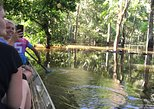 Amazon Jungle Experience with Overnight, Manaus, BRASIL