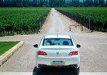 Wine tour in Mendoza Uco Valley, Mendoza, ARGENTINA