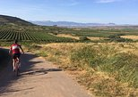 Rioja Bike & Wine, including 2 winery visits with wine tastings, La Rioja, ARGENTINA
