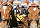 Guided Horse Tram or Horse-Drawn Carriage Tour through Historic Delft,