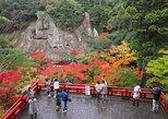 Fukui private full day with professional photographer - Dinosaur and History, Kanazawa, JAPON