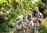 Half Day Morning: Explore Village Life and Countryside by Bicycles., Battambang, CAMBOYA