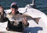 6-Hour Private Inshore Fishing Charter from Orange Beach, Gulf Shores, AL, ESTADOS UNIDOS