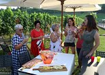 Wine and food tasting tour near the vineyards, Lago de Garda, ITALY