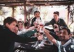 Auténtica excursión de cata de vinos selectos, Luján y Maipú con almuerzo gourmet, Mendoza, ARGENTINA