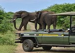 Chobe Day Trip, ,