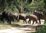 Kumana National Park Private Safari with Naturalist. Batticaloa, Sri Lanka