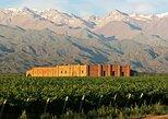 Tour de bodegas por valle del uco, Mendoza, ARGENTINA