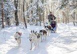 Mont Lac-Beauport Trineo con perros o Pesca en el hielo o Moto nieve, tu eliges!. Quebec, CANADA