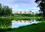 Private Personalized City Tour Experience of São Paulo, Brazil. Sao Paulo, BRAZIL