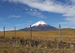 Active Ecuador 8 days,