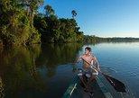 Tambopata national reserve experience 4 days. Puerto Maldonado, PERU