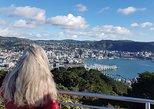 Private Wellington Full Day Sightseeing Tour, Wellington, NUEVA ZELANDIA