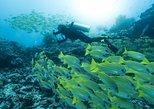 Open Water Diver, Ko Tao, TAILANDIA