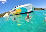 No Extra Cost | Dolphin Watch & Tangalooma Wrecks Cruise with Snorkeling. Brisbane, AUSTRALIA