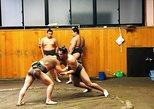 Presencie una práctica de sumo por la mañana en un establo de sumo de Tokio. Tokyo, JAPON
