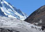 Ice Trekking Glaciar Cagliero,