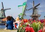 Molinos de viento de Zaans Schans, tulipanes, Marken desde Ámsterdam. Amsterdam, HOLANDA