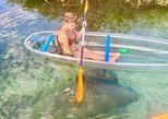 Four Hour Clear Kayak Rental of Clearwater Beach, ,