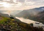 Oporto a Regua y Valle del Duero: tour de un día en barco con comidas,