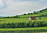 Excursão Privada: Passeio de um dia à Região Vinícola de Tokaj saindo de Budapeste,