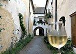 Viena e Budapeste Transfer com vinho, visita guiada,
