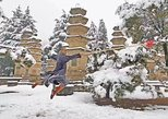 Henan 3-day Tour featuring Shaolin Temple and other Must-see Spots, Luoyang, CHINA