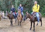 Tour a Caballo desde Guadalupe a Monserrate,