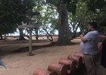 Prison Island and Nakupenda Private tour - Full day + Seafood Buffet, Zanzibar, TANZANIA